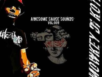 Smowkey Di Kota Awesome Sauce Sounds Vol 009 Mp3 Download Fakaza
