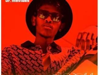 Dr MaVibes – Umlilo Ft. Blaq Diamond, Manny Yack, Snymaan & Brvdley
