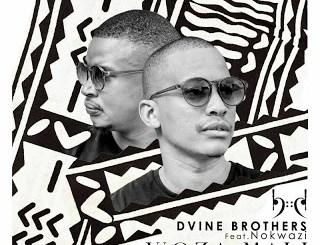 Dvine Brothers Woza Mali (Eltonnick Remix) Mp3 Download Fakaza