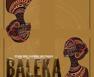 Techno Bros Baleka Mp3 Fakaza Music Download