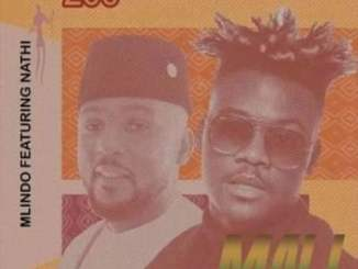 Mlindo The Vocalist Mali Ft. Nathi Mp3 Fakaza Music Download