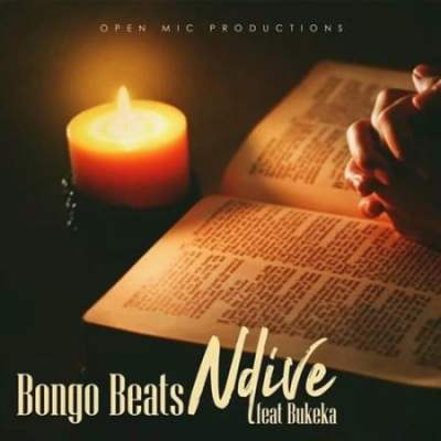 Bongo Beats Ndive Mp3 Fakaza Music Download