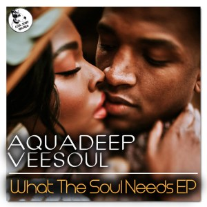 Aquadeep & Veesoul What The Soul Needs Ep Zip Fakaza Music Download