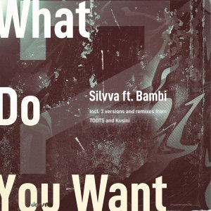 Silvva & Bambi What Do You Want Ep Zip Fakaza Music Download