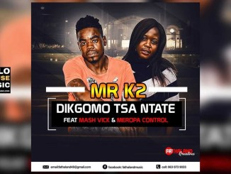 Mr K2 Dikgomo tsa Ntate Ft MashVick & Meropa Control Mp3 Download