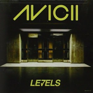 Avicii – Levels (Smiz Playtown Afro Spiritual Mix) mp3 download