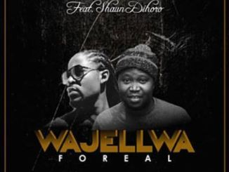 Prince Kaybee – Wajellwa mp3 download