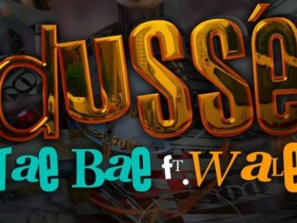 Tae Bae – D'Usse Ft. Wale mp3 download