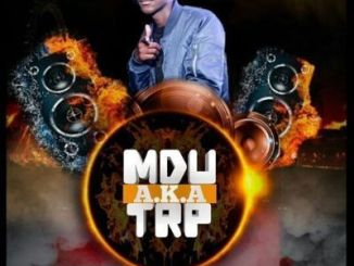 Mdu a.k.a TRP – Dlala Stoks mp3 download