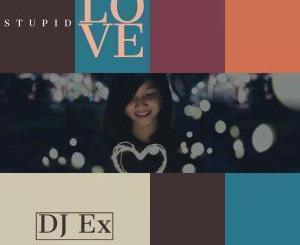 DJ Ex – Stupid Love (Original Mix) mp3 download