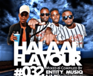 DOWNLOAD Halaal Flavour #034 Mixed & Compiled by Entity MusiQ & Lil'Mo Mp3