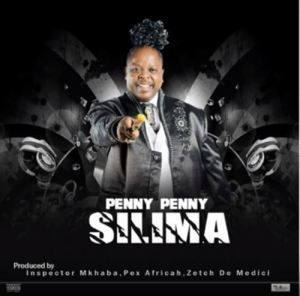Penny Penny – Silima (Amapiano Beef To Malema) mp3 download