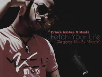 Prince Kaybee – Fetch Your Life (Reggae Mix By Mvzzle) Ft. Msaki mp3 download