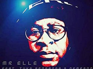 DOWNLOAD Mr Elle Lifetime Ft. Tuks Senganga & Nemeson Mp3