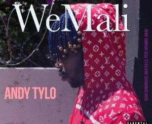 DOWNLOAD Andy Tylo WeMali Mp3