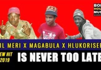DOWNLOADLil Meri Is Never Too Late Ft. Magabula & Hlukoriser Mp3