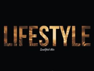 DOWNLOAD Music Fellas Ft. Malibu Lifestyle (Soulified Mix) Mp3