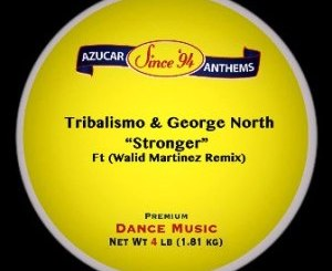 DOWNLOAD Tribalismo & George North Stronger (Walid Martinez Remix) Mp3