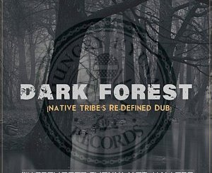 Warren Deep, Thexy LX, Jay Afro – Dark Forest (Native Tribe's Re-Defined Afro Remix)