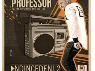 Professor Ndincedeni 2 Ft. Dalom Kids, MSK & Mr Luu Mp3 Download