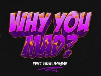 DJ Zan D – Why You Mad Ft Gigi Lamayne MP3 DOWNLOAD