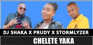 DOWNLOAD DJ Shaka, Prudy & Stormlyzer Chelete Yaka Mp3