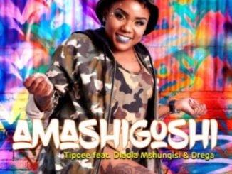 DOWNLOAD Tipcee Amashigoshi Ft. Dladla Mshunqisi & Drega Mp3