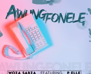 DOWNLOAD Woza Sabza Awungfonele Ft. P Elle Mp3