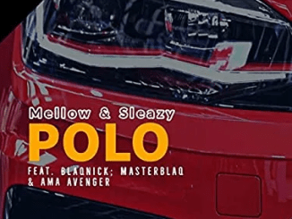 Mellow & Sleazy – Polo Ft. Blaqnick, MasterBlaQ & Ama Avenger mp3 download
