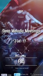 FSD Deep Melodic Meetings Vol. 11 Mp3 Download