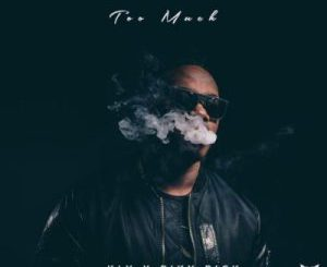 KLY Too Much Zip Download