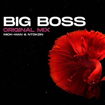 Download Mick-Man & Ntokzin Big Boss Mp3 Fakaza