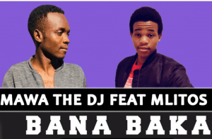 DOWNLOAD Salmawa The DJ Bana Baka Ft. Mlitos (Original) Mp3
