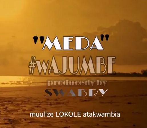 Meda Wajumbe Mp3 Download Fakaza