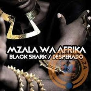 Mzala Wa Afrika – Desperado (Original Mix) mp3 download