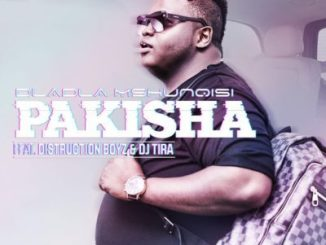 Dladla Mshunqisi – Pakisha (Dj Lazerman Remix) ft. Distruction Boyz