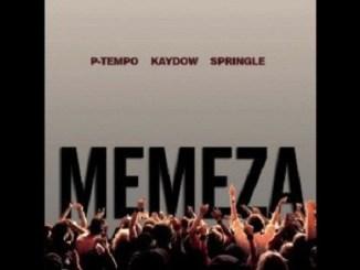 P-Tempo, Kaydow & Springle – Memeza