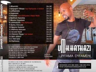 Umkhathazi Inyama Enyameni