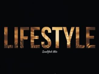 Fellas – Lifestyle (Soulified Mix) ft. Malibu