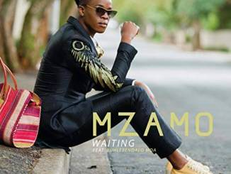 Mzamo – Waiting Ft. Buhlebendalo Mda