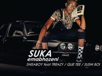 Download & Stream Shisaboy – Suka Emabhozeni Mp3