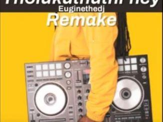 Euginethedj – Tholukuthi Hey (Remake)