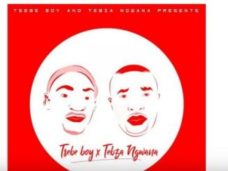 Tsebe Boy & Tebza Ngwana – Pitori Funk