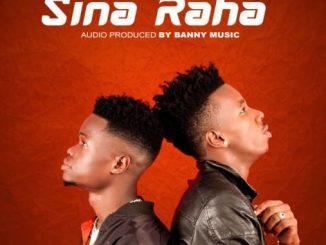 The Smash – Sina RahaThe Smash – Sina Raha