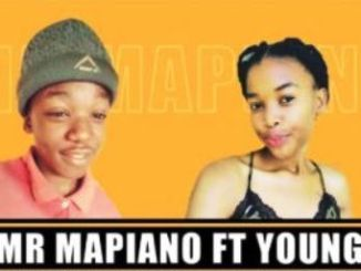 Mr Mapiano – Di Maynard Ft. Young Wizzy (Amapiano)