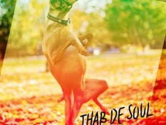 Thab De Soul – Izinja