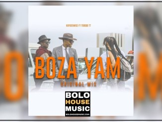 Kaygeewise – Boza Yam Ft. Tebogo TT