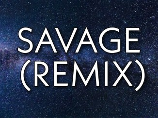 savage remix lyrics