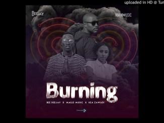 Bee Deejay & Mailo Music ft Kea Zawadi - Burning