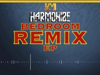 Harmonize – Bedroom Remix
